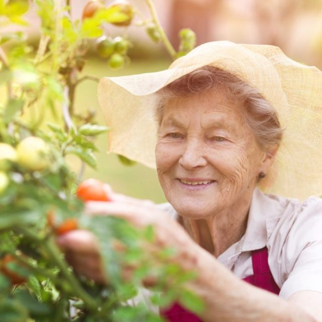 Naturopathic Care Ages 60+